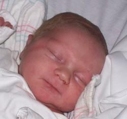 baby shelton